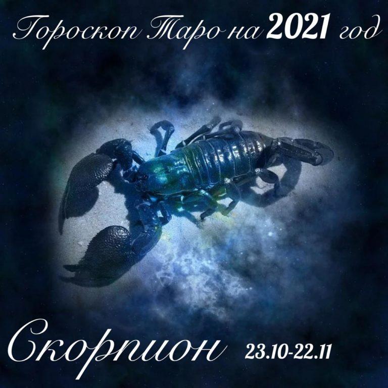 Скорпион  (23 октября — 22 ноября)