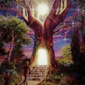 """Медитация """"Родовая Река"""". Исцеление рода"""